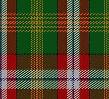 00115 North West Territories District Tartan Fabric Print Iphone Case by Detnecs2013