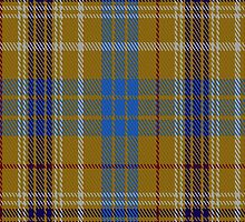00118 Ottawa District Tartan Fabric Print Iphone Case by Detnecs2013