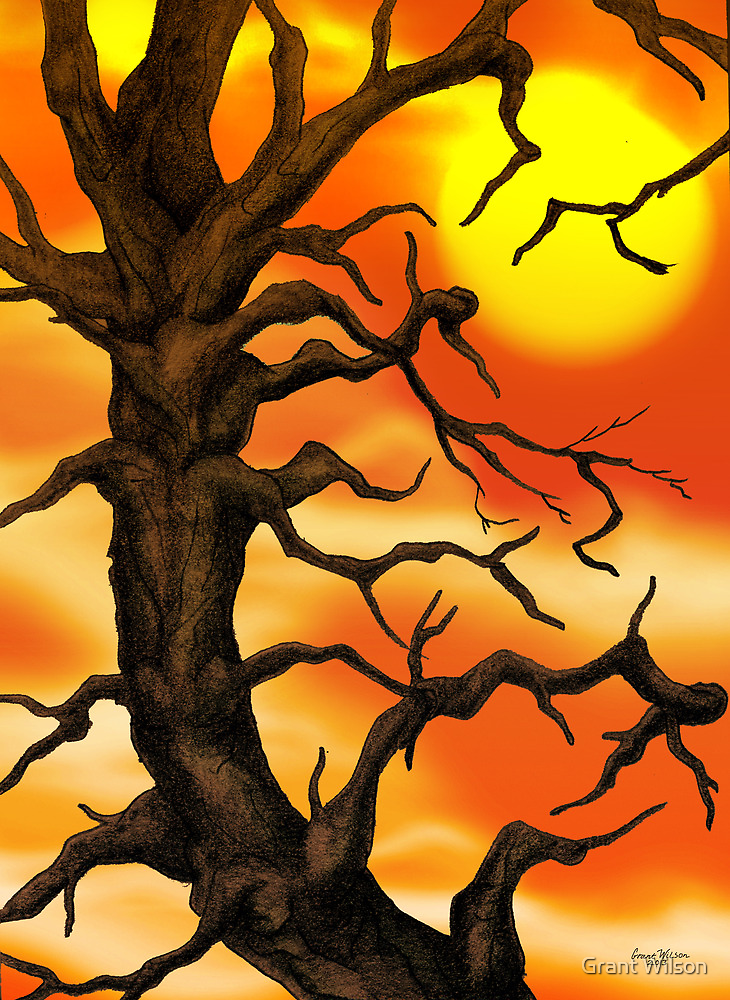 Sunset Tree Pencil drawing by Grant Wilson