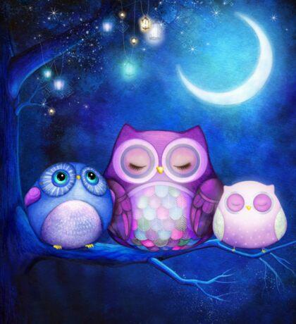 Night Owls  Sticker