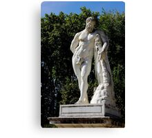 Classical masculinity Canvas Print