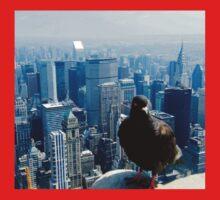 Birds Eye View of Manhattan Kids Clothes