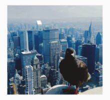 Birds Eye View of Manhattan by kirstyfowler