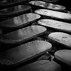 Stepping Stones by manateevoyager