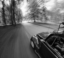 Volkswagen Beetle by willgudgeon