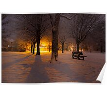 Gildredge park snow light Poster