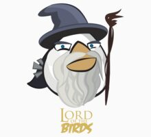 Lord of the Birds-Gandalf by IChooseYou