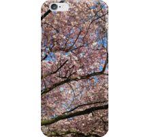 Spring. iPhone Case/Skin