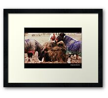 """Hungry as a Horse"" Framed Print"
