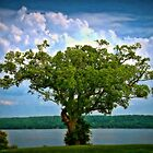 Mount Vernon Tree of Life by MarcoMeyo18