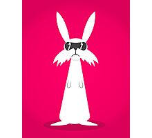 The Rabbit Photographic Print