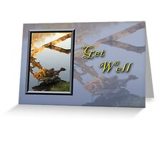 Get Well Fish Greeting Card