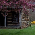 The Carson Cabin by Forrest Tainio