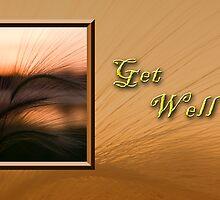 Get Well Grass Sunset by jkartlife