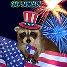Fourth Of July Raccoon by jkartlife