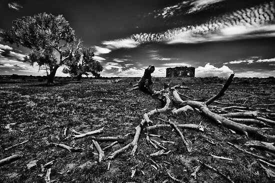 Desolate by Stephen Cullum