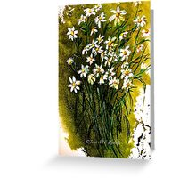 When Daisies Pied Greeting Card