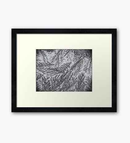 Frost 2 B&W Framed Print