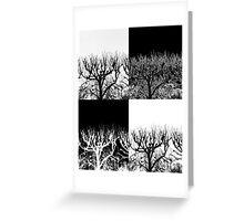 Barren Trees Greeting Card