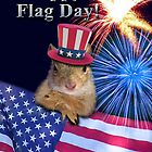 Flag Day Squirrel by jkartlife