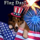 Flag Day Sheltie Puppy by jkartlife