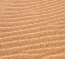Sand texture ~ Ribs by Karen  Betts