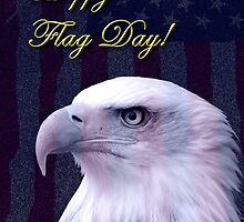 Flag Day Eagle by jkartlife