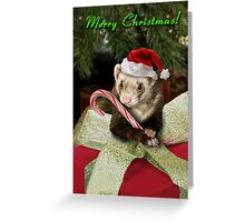 Christmas Ferret Greeting Card
