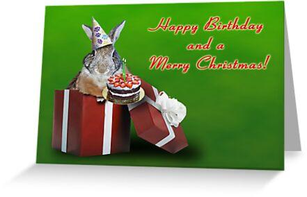 Birthday And Christmas Bunny Rabbit by jkartlife