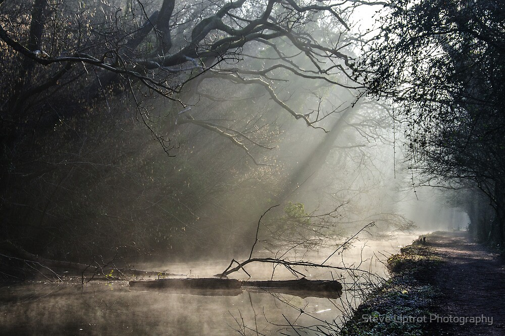 The Glamorganshire Canal by Steve  Liptrot