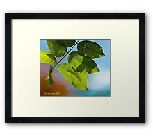 Abstract in leaves Framed Print