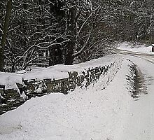 Winter Scene by RedBudRun