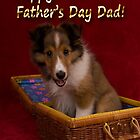 Father's Day Sheltie Puppy by jkartlife