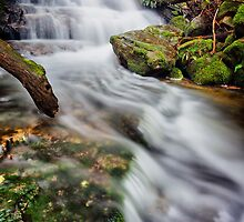 Falls on Betts Vale Track, Mount Wellington #5 by Chris Cobern