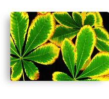 Neon Green Leaves Canvas Print