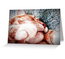 Sleepy Kitty, Happy Kitty Greeting Card