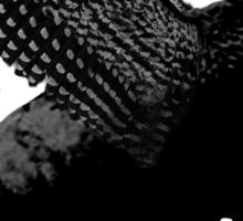 Buffalo Wings Flying Buffalo Sticker