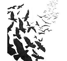 Flock of Birds in Flight Photographic Print