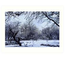 A Winter's Day Art Print