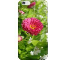 English Daisies 2 iPhone Case/Skin