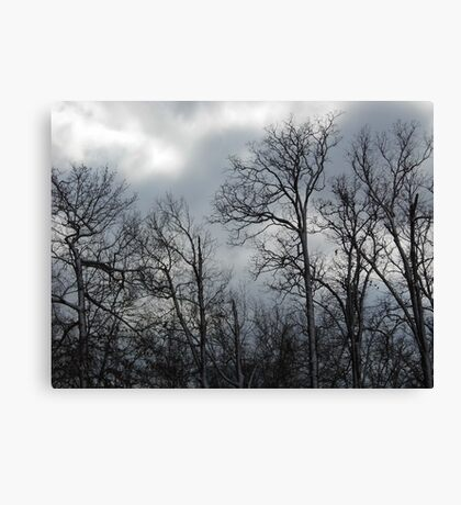 Blue Cold Canvas Print