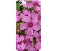 Flowers 4 iPhone Case/Skin