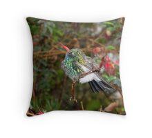 Broad-Billed Hummingbird in Rain Throw Pillow