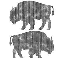 Weathered Buffalo by RedPine