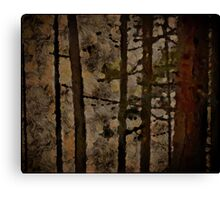 Jackal In The Tree Canvas Print