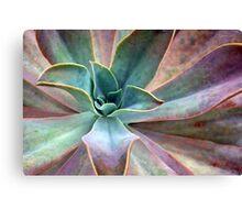 Organic Beauty Canvas Print