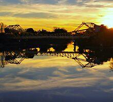 Bridge at Steamboat Slough by Barbara  Brown