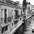 Venice by Dan Edwards