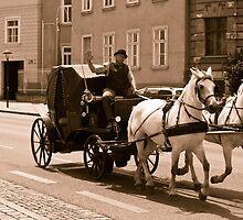 the coachman by dirk hinz