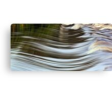 Water Curves Canvas Print